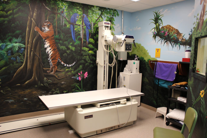 CRMC Children's Clinic X-Ray Area Remodel